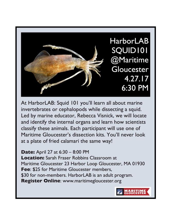 2017 HarborLAB Squid flyer