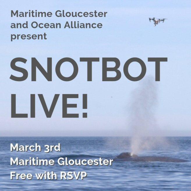 SNOTBOT LIVE!