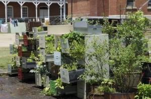 filing cabinet garden